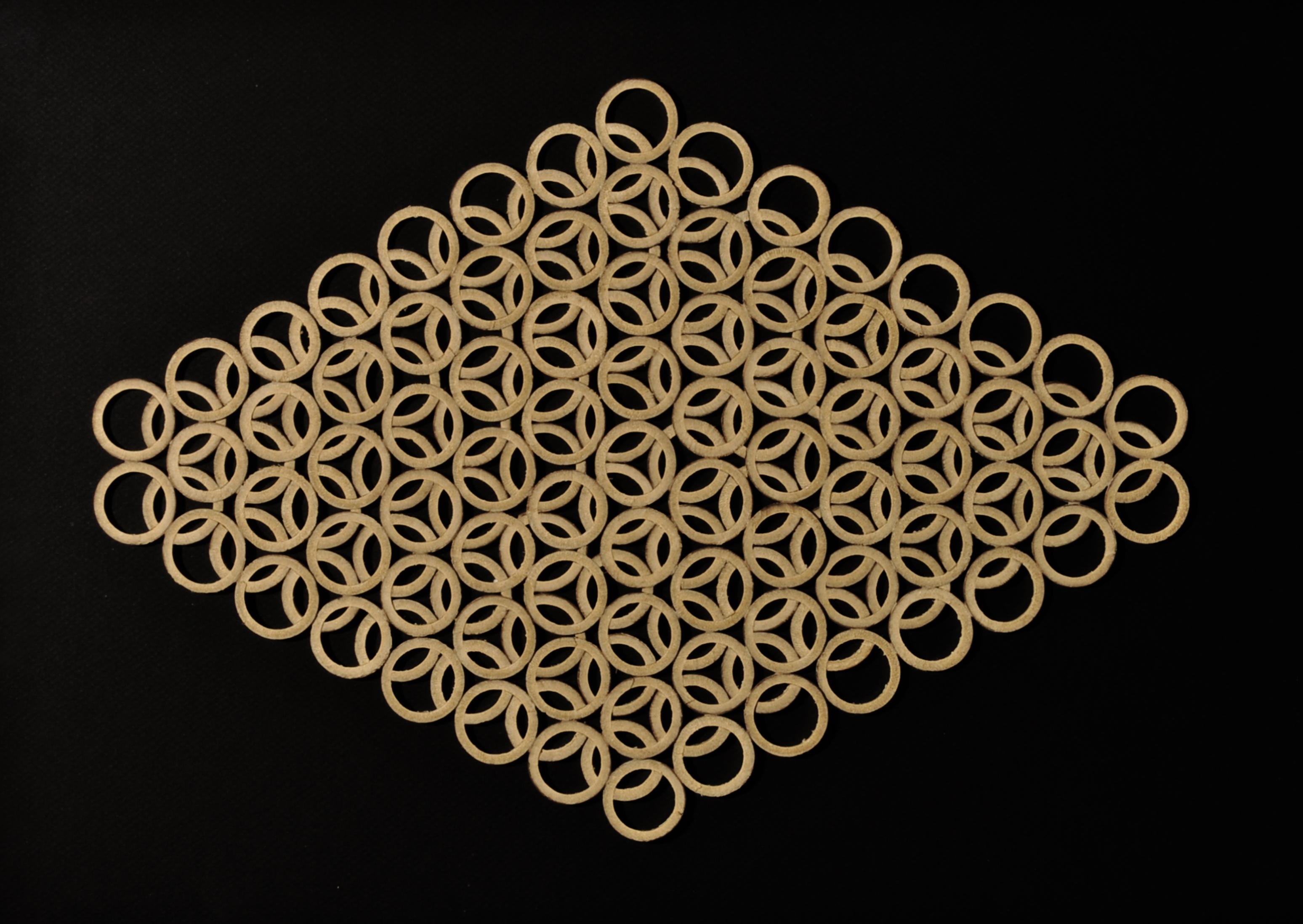 04_Estudio de geometria Bambusoideae I